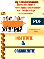 2 Cultura Organizationala