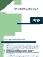 Cultura Organizationala Power Point