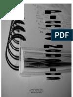 P_5_lavandería_dicoro_B_Plan viabilidad