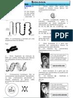 genetica parte1.resumo