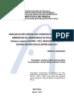 DissertaRenataAssuncao2012[1]