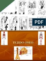 Tejido Oseo (1ra Parte)