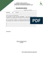 Declaracion Jurada de Participacion - Procompite