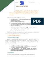 2-Audit Des Effectifs