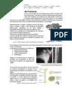 Compendio de Ortopedia