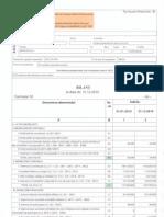 Bilant contabil 31.12.2010
