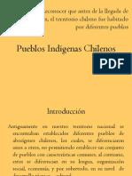 Pueblos Indigenas Chilenos