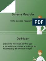 Sistema Muscular Enfe 2
