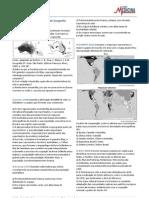 Exercicios Gabarito Geografia Geral Oceania