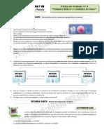 Ficha 2 Estados de La Materia - Modelos