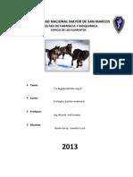 Analisis de La Llegada Del Lobo Negro
