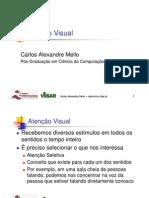 PV Aula05 VisualAttention
