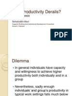 Why Productivity Derails?