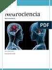 Neuroanatomia. Temario Completo