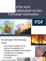 Bahaya Asap Hasil Pembakaran Hutan Terhadap Kesehatan