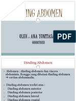 Dinding Abdomen