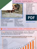 População_brasileira_Aula