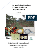 Drenth Phytophthora Practical Guide9