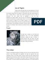 Characteristics of Tigers