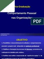 Comportamento Pessoal Nas Organizaes 2007 Aluno