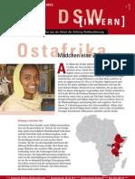 DSW-Intern-2013-3.pdf