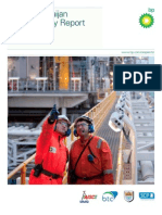 BP Sustainability Report 2009
