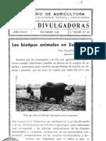 Los biotipos animales en zootecnia -1942.pdf