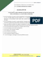 Allegato XI- D lgs n°81-2008