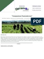 Campesinos Posmodernos.doc
