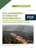 Grain 4667 No Al Acaparamiento de Tierras Para Agrocombustibles