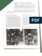 Historia Bachillerato 0 Civilizaciones Culturas, Sociedades
