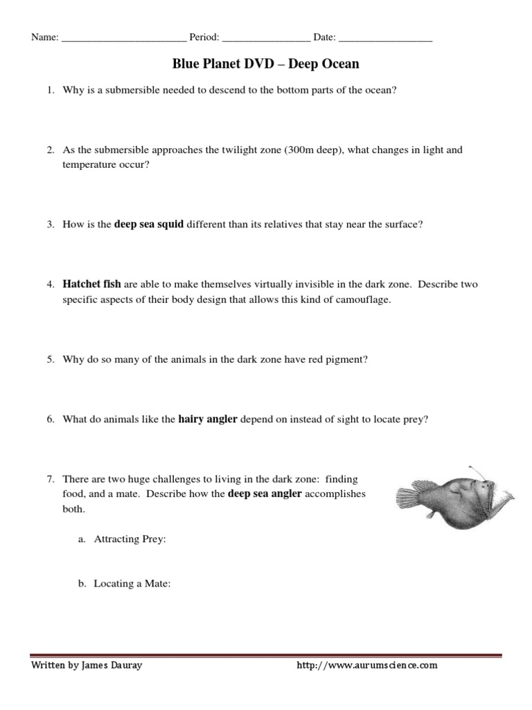 worksheet Planet Earth Shallow Seas Worksheet pdf blue planet coral seas worksheet answers 28 pages the sea oceans