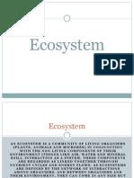 Ecosystem - N23atural Ecosystem Belen