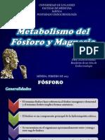 Metabolismo Del Fosforo y Magnesio