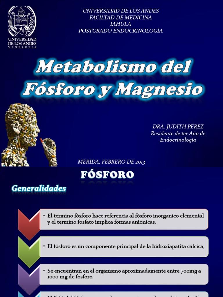 Metabolismo Del Fosforo y Magnesio - Calcio - Vitamina D