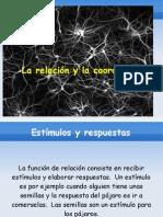 Presentación del tema  2 por Alexander Peláez(1)