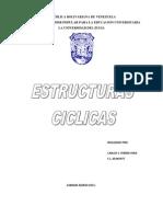 Que Son Estructuras Ciclicas