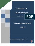 Raport APAVITAL_2012