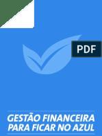 Guia de Gestão Financeira para ficar no Azul