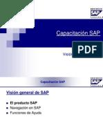 Introduccion SAP Conceptos Basicos