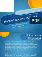 Educacion Multinivel