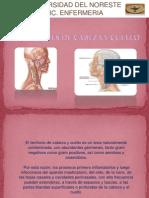 Infecciones Cabeza y Cuello