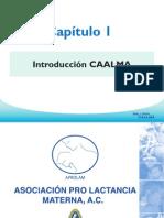1.Introduccion CAALMA