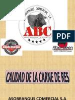 CALIDAD DE LA CARNE DE RES.pdf