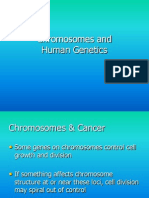 Lecture Chromsomes and Human Genetics Fall 2013