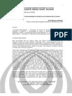 João Maurício Adeodato - A pretensão de universalização do direito como ambiente ético comum