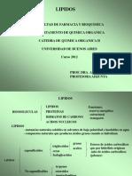LIPIDOS 2012 Present