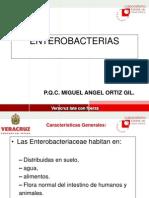 enterobacterias-1204405404864881-5