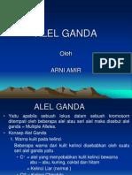 2. Alel Ganda