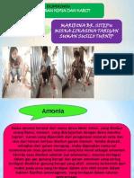 Presentation KIMIA ANALISA ANORGANIK-1.Pptx [Autosaved]